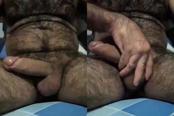 Urso peludo e dotado batendo punheta